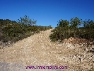 Plots for sale in Cervera del Maestre